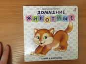 Домашние животные. Стихи и картинки #15, Ксения М.