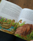 Чудесное путешествие Нильса с дикими гусями #13, Дарья С.