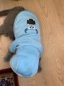 Толстовка с капюшоном для собак и кошек, Цвет: Голубой, Размер: M #13, Юлия К.