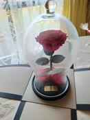 Долговечная стабилизированная роза в стеклянной колбе Premium X  - Notta & Belle #11, Георгий Р.