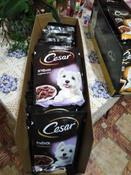 Корм консервированный Cesar, для взрослых собак, с ягненком в сырном соусе, 28 шт по 85 г #5, Натали П.