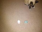 Игрушка для животных Hexbug Мышка на радиоуправлении белая #7, Рустем Я.