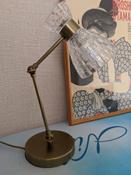 Настольная офисная лампа Lumion  3704/1T, E14, 40 Вт #1, Ольга С.