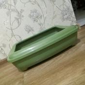 Туалет для кошек PetTails глубокий, большой (под наполнитель) 50*38*13см, оливковый #6, Ирина Н.