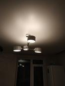 Потолочный светильник Lumion  ASHLEY 3742/4C , E27, 240 Вт #4, Алевтина Б.