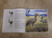 Древние животные нашей планеты. Палеонтология в картинках #3, Роман Николаевич