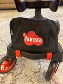 Коляска-трансформер для кукол 12-в-1 9005 Buggy Boom Aurora #15, Елена Б.