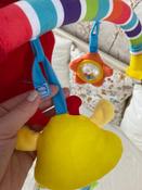 Развивающий центр Жирафики Дуга, с 5 съемными игрушками, 939625 #1, Екатерина Л.