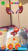 Анатомия. 4D Энциклопедия в дополненной реальности #14, Александра К.