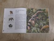Древние животные нашей планеты. Палеонтология в картинках #6, Роман Николаевич