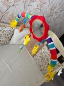 Развивающий центр Жирафики Дуга, с 5 съемными игрушками, 939625 #2, Екатерина Л.