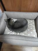 Лежанка Bedfor со съемными чехлами, цвет Бежевый,  размер 70*50 см #10, Гизатуллина Светлана