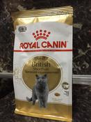 "Корм сухой Royal Canin ""British Shorthair Adult"", для  британских короткошерстных кошек старше 12 месяцев, 400 г #11, Евгений Е."