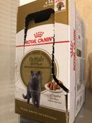 """Консервы Royal Canin """"British Shorthair Adult"""", для кошек британской породы старше 12 месяцев, мелкие кусочки в соусе, 85 г, 12 шт #11, Вольнягина Ольга"""