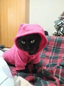 Толстовка с капюшоном для собак и кошек, Цвет: Розовый, Размер: XL #12, Наталья Р.