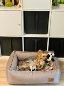 Лежанка для животных Bedfor со съемными чехлами, цвет Мокко, размер 60 х 45 см #15, Виктория Т.