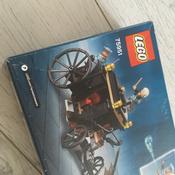 Конструктор LEGO Harry Potter 75951 Побег Грин-де-Вальда #5, Светлана