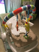 Развивающий центр Жирафики Дуга, с 5 съемными игрушками, 939625 #11, Екатерина Ю.