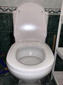 Сиденье для унитаза FIORE SoftClose (микролифт) #10, Виталий В.