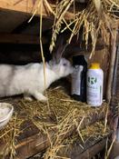 Кормовая добавка для животных и птиц Реасил (Reasil Humic Health) дойпак 1 кг #6, Екатерина И.