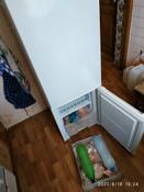 Холодильник Бирюса 118, белый #2, Андрей