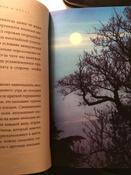 Сила леса. Как деревья помогают нам обрести здоровье и радость (комплект)   Нет автора #4, Ирина Ч.