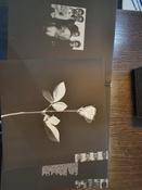 Depeche Mode. Violator (LP) #11, Сергей К.
