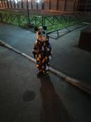 Балаклава Lassie #4, Юлия С.