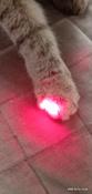 Лазерная указка (фонарик+ультрафиолет) игрушка для кошки с карабином, желтый. #3, Вита Р.