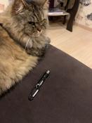 Лазерная указка (фонарик+ультрафиолет) игрушка для кошки с карабином, чёрный. #9, Елена С.