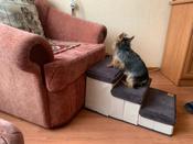 Лестница для собак прикроватная, складываемая, с отсеками для хранения #10, Артур Ч.