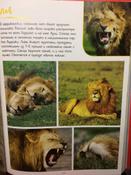 Моя большая книга о животных   Куйе Наталья #11,  Наталья