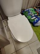 Сиденье для унитаза FIORE SoftClose (микролифт) #6, Ренат Т.