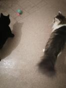 Интерактивная игрушка для кошек PetLeon Вращающийся на 360 градусов мяч USB заряжаемый светодиодная подсветка #2, Наталья