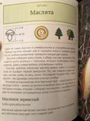 За грибами. Карманный атлас-определитель | Ильина Татьяна Александровна #10, Анна
