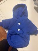 Толстовка с капюшоном для собак и кошек, Цвет: Синий, Размер: XS #3, кира в.