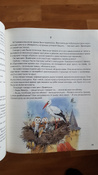 Чудесное путешествие Нильса с дикими гусями #91, Анастасия А.