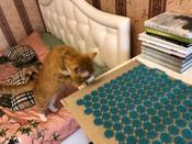 Gezatone Акупунктурный массажный коврик EcoLife #6, Андрей