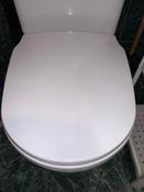 Сиденье для унитаза FIORE SoftClose (микролифт) #11, Виталий В.