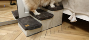 Лестница для собак прикроватная, складываемая, с отсеками для хранения #1, Александр С.