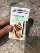Суспензия Пазител  от глистов для щенков и собак мелких пород #5, Светлана С.