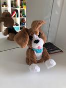 FurReal Friends Интерактивная игрушка Говорящий щенок #7, Ольга Васильева