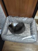 Лежанка Bedfor со съемными чехлами, цвет Бежевый,  размер 70*50 см #11, Гизатуллина Светлана