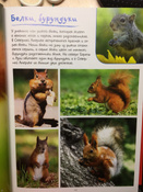 Моя большая книга о животных   Куйе Наталья #12,  Наталья