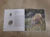 Древние животные нашей планеты. Палеонтология в картинках #4, Роман Николаевич