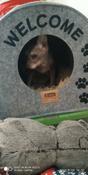 "Домик для животных Eva ""Будка WELCOME"", войлок, 33х33х45см #3, Tatiana P."