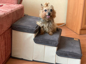 Лестница для собак прикроватная, складываемая, с отсеками для хранения #9, Артур Ч.