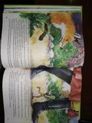 Чудесное путешествие Нильса с дикими гусями #55, Юлия Б.