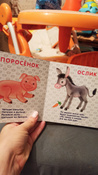 Домашние животные. Стихи и картинки #13, Алена П.