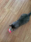 Лазерная указка (фонарик+ультрафиолет) игрушка для кошки с карабином, желтый. #10, Артем А.